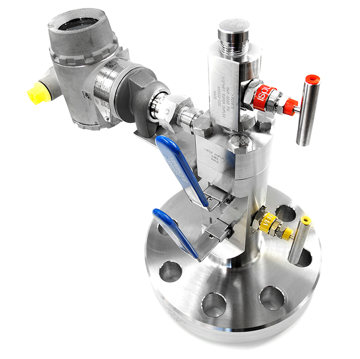 Double Block & Bleed with Sample Valve